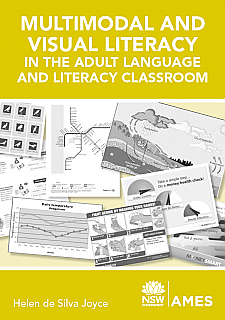 Multimodal and Visual Literacy (Workbook)